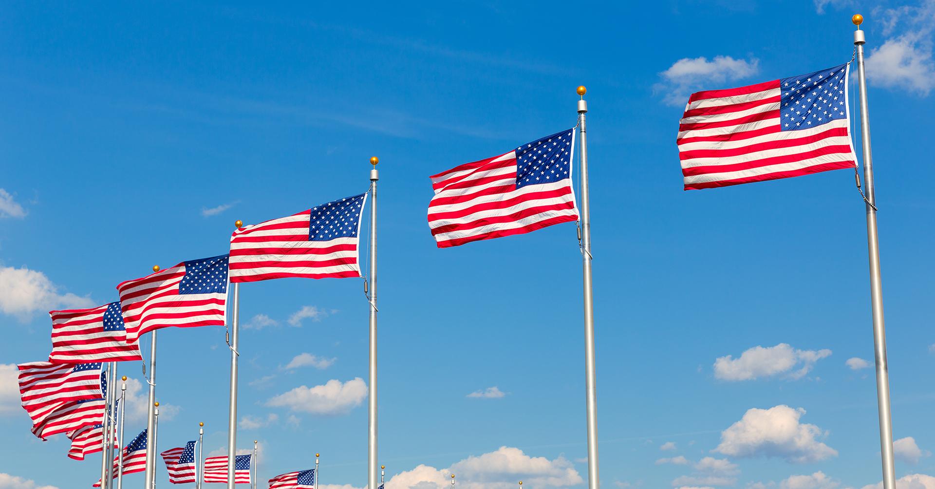 Sebasigns flagpole